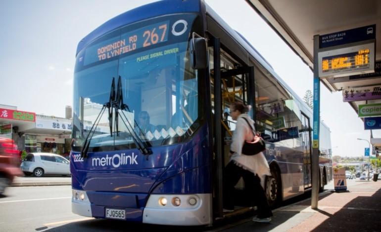 Roskill Bus Survey