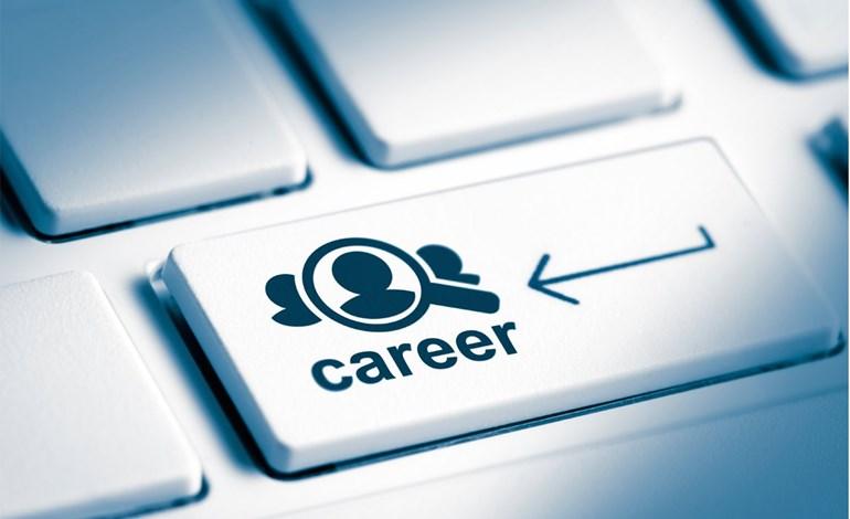 Career job CV interview job search Kiwi