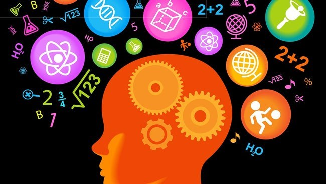 Brain memories research