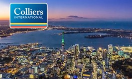 Property Business Colliers Gawan Auckland