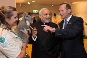 Indian Prime Minister Narendra Modi was charmed by the grey cuddly bundle. With a big smile, he patted the koala bear as Australian Prime Minister Tony Abbott looked on smilingly