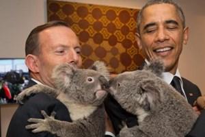 US President Barack Obama and Australian PM Tony Abbott pose with kissing koala bears in their arms